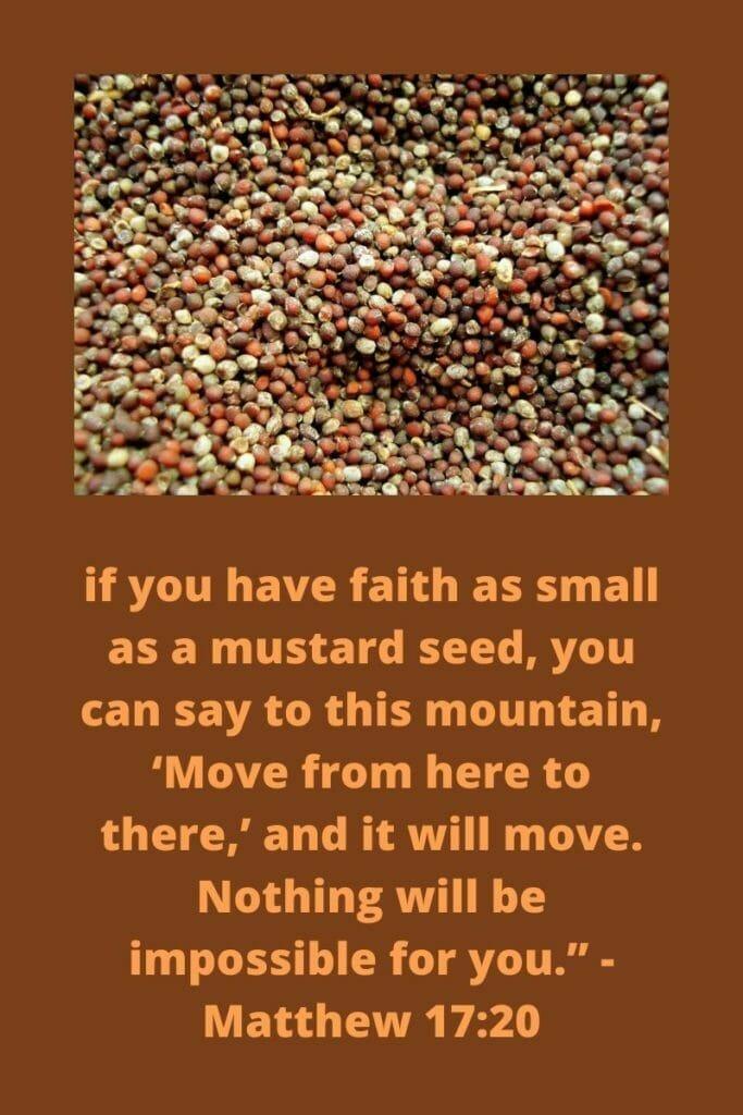 Mustard Seed Faith - Matthew 17:20